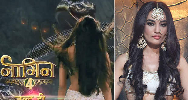 Naagin 4 latest news & serial gossips: Nagin 4 Starting Date, Star Cast, Story