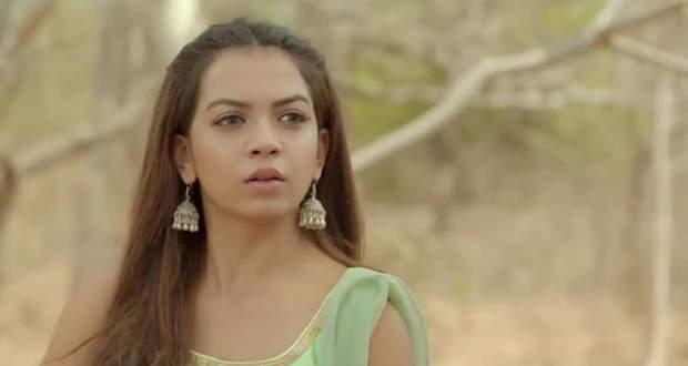 Nazar serial upcoming twist: Saavi to save Naman from Dilruba