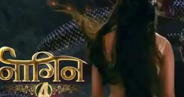 Naagin 4 Cast News: Aalisha Panwar & Nia Sharma confirmed as leads