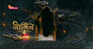 Naagin 4 Latest News: Launch date of Naagin season 4 revealed