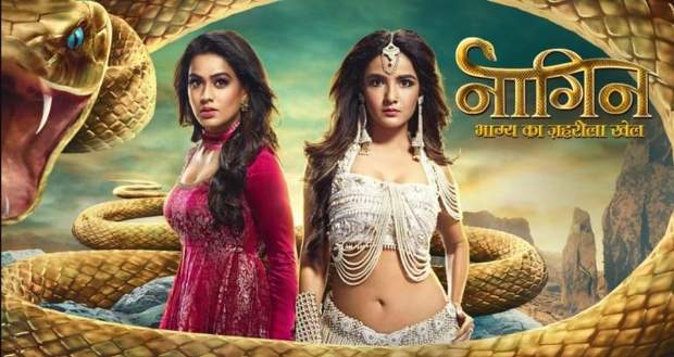 BARC India TRP Ratings List: Naagin 4 shines at No.1 TRP spot