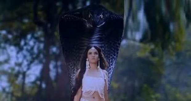 Naagin 4 Latest Spoiler Update: Nayanthara to get saved by Vishakha