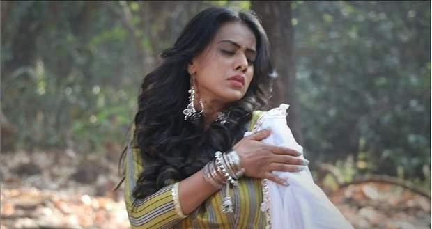 Naagin 4 Latest Spoiler Update: Brinda to kill Madhav in the jungle