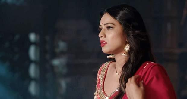 Naagin 4 Spoiler: Vishakha to fool Dev by taking Brinda's form