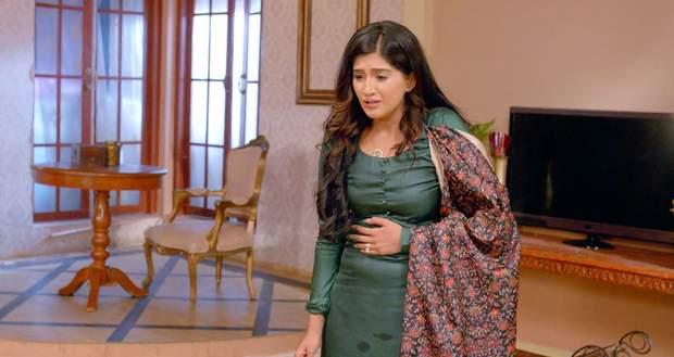 Choti Sardarni Gossip: Meher to fall off during her pregnancy