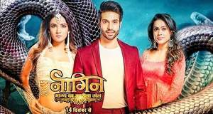Naagin 4 Gossip News: Naagin 4 serial to get whole new cast and storyline