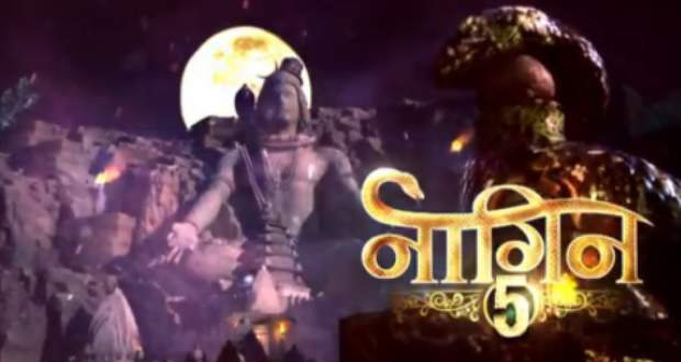 Naagin 5 Future Story: Bani to marry Veer out of guilt