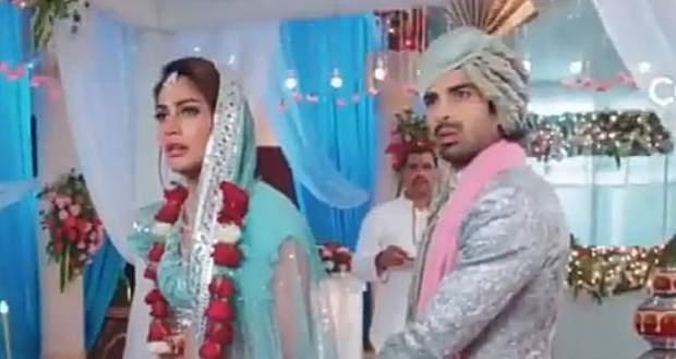 Naagin 5 Upcoming Twist: Bani marries Jai to take revenge on Veer