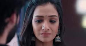 Yeh Hai Chahatein Upcoming Story: Mahima confronts Rudraksh and Preesha