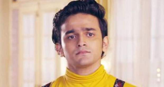 Barrister Babu Spoiler: Anirudh to fall asleep on his honeymoon night