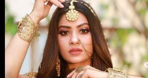 Naagin 6:  New Season Naagin Story reveals Priya-Rehan's daughter as new Nagin