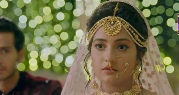 IPZN: Ishqi finds out about Mayank's wrongdoings and stops the marriage