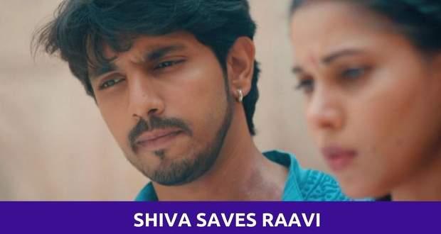 Pandya Store: Shiva to risk his life to save Raavi