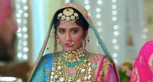 Choti Sardarni Upcoming Twist: Dida tries to bring Seher and Rajveer close