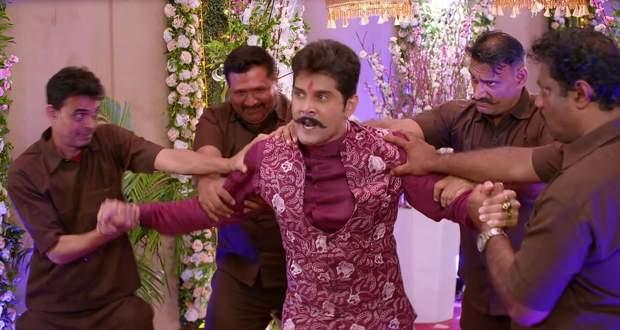 Molkki Upcoming Story: Virendra tries to hijack Purvi's wedding